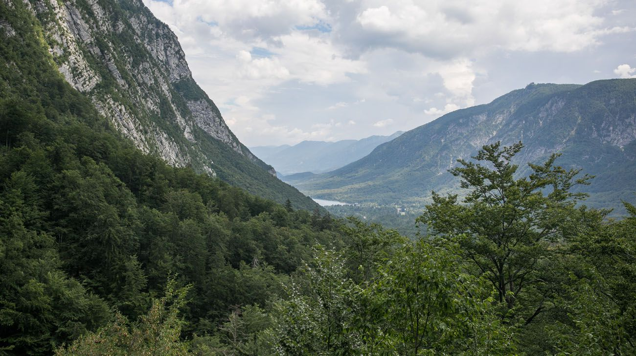 Lake Bohinj View