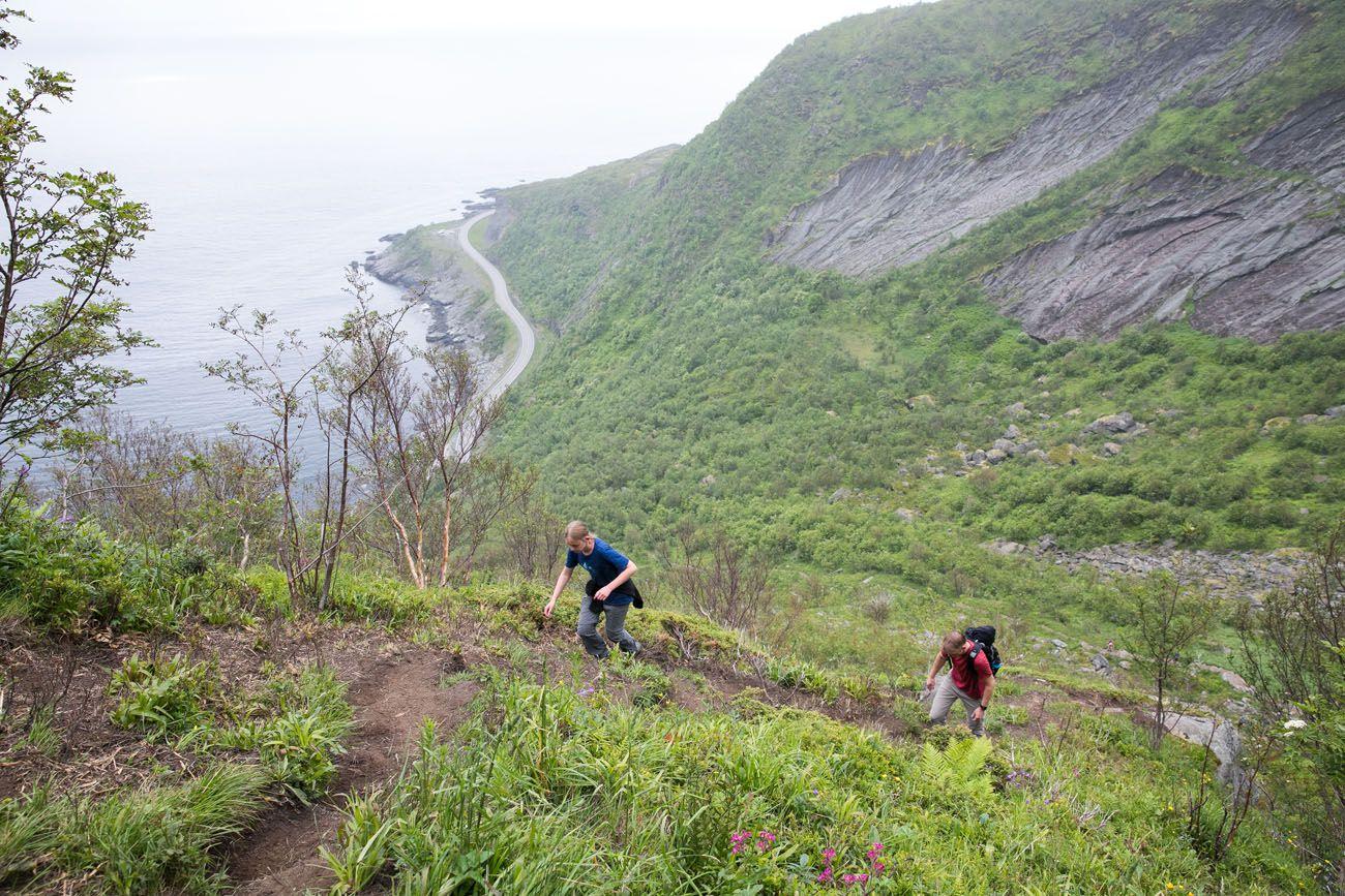 Reinebringen Trail