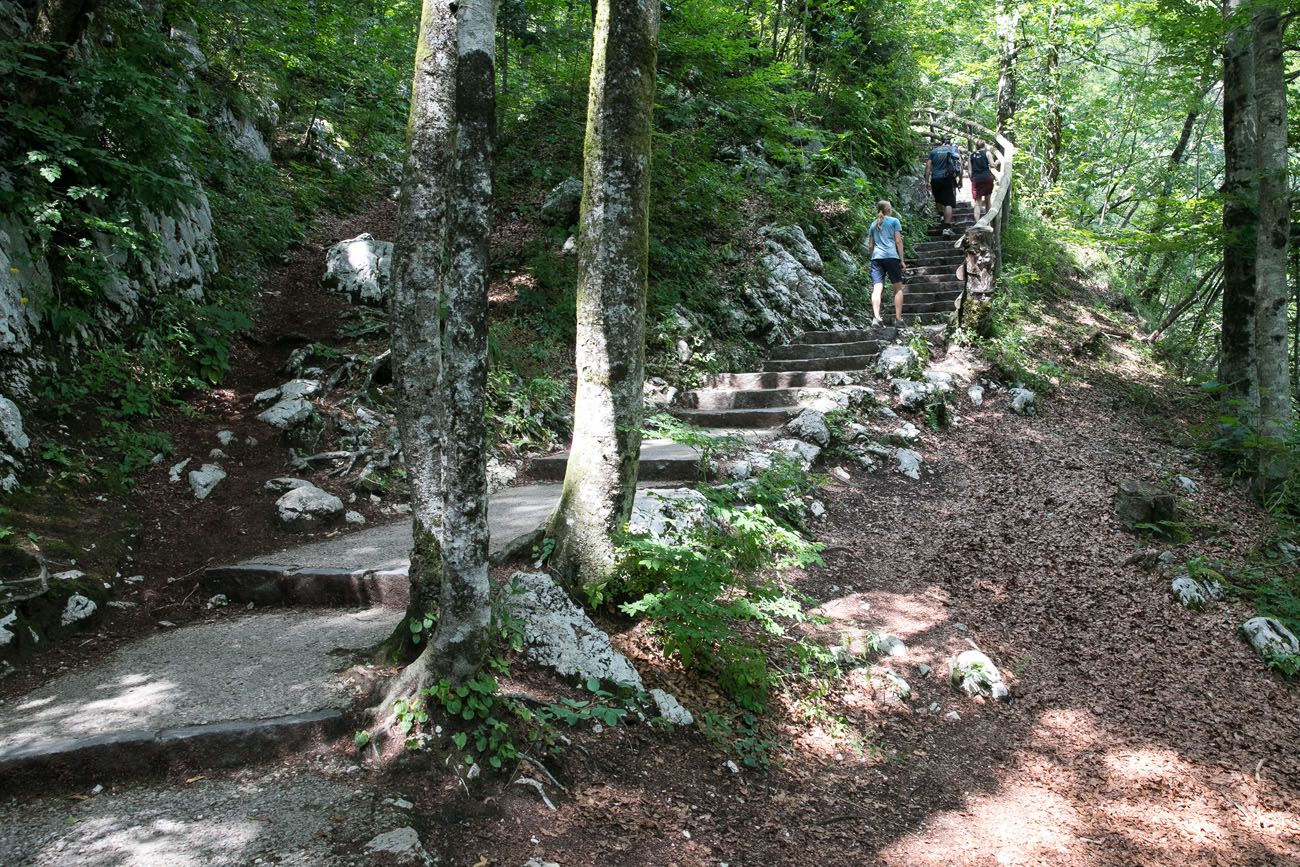 Savica Waterfall Trail
