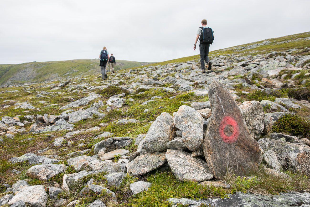 Trail Markers Stave Bleik