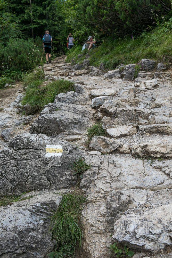 Yellow Trail Zakopane