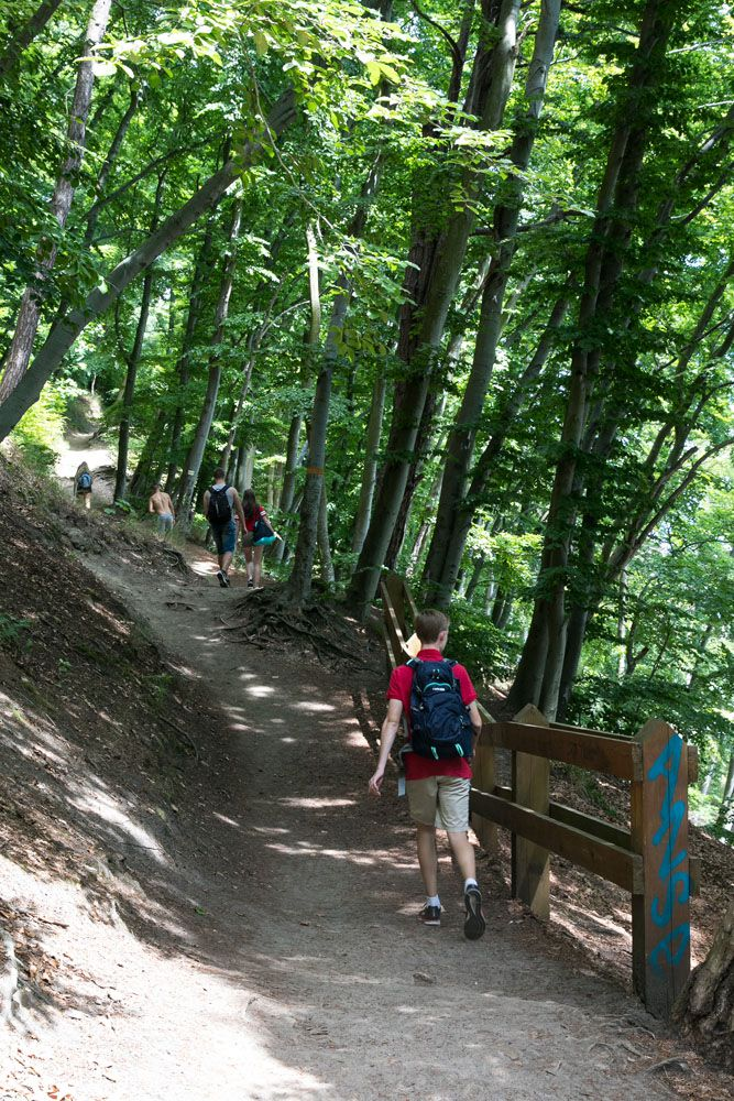 Orlowo Trail