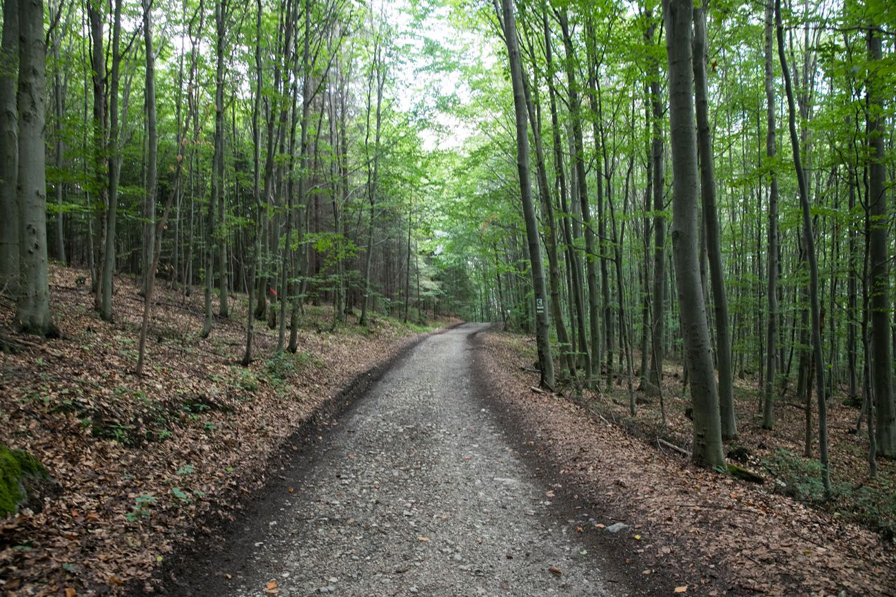 Slovak Paradise Green Trail