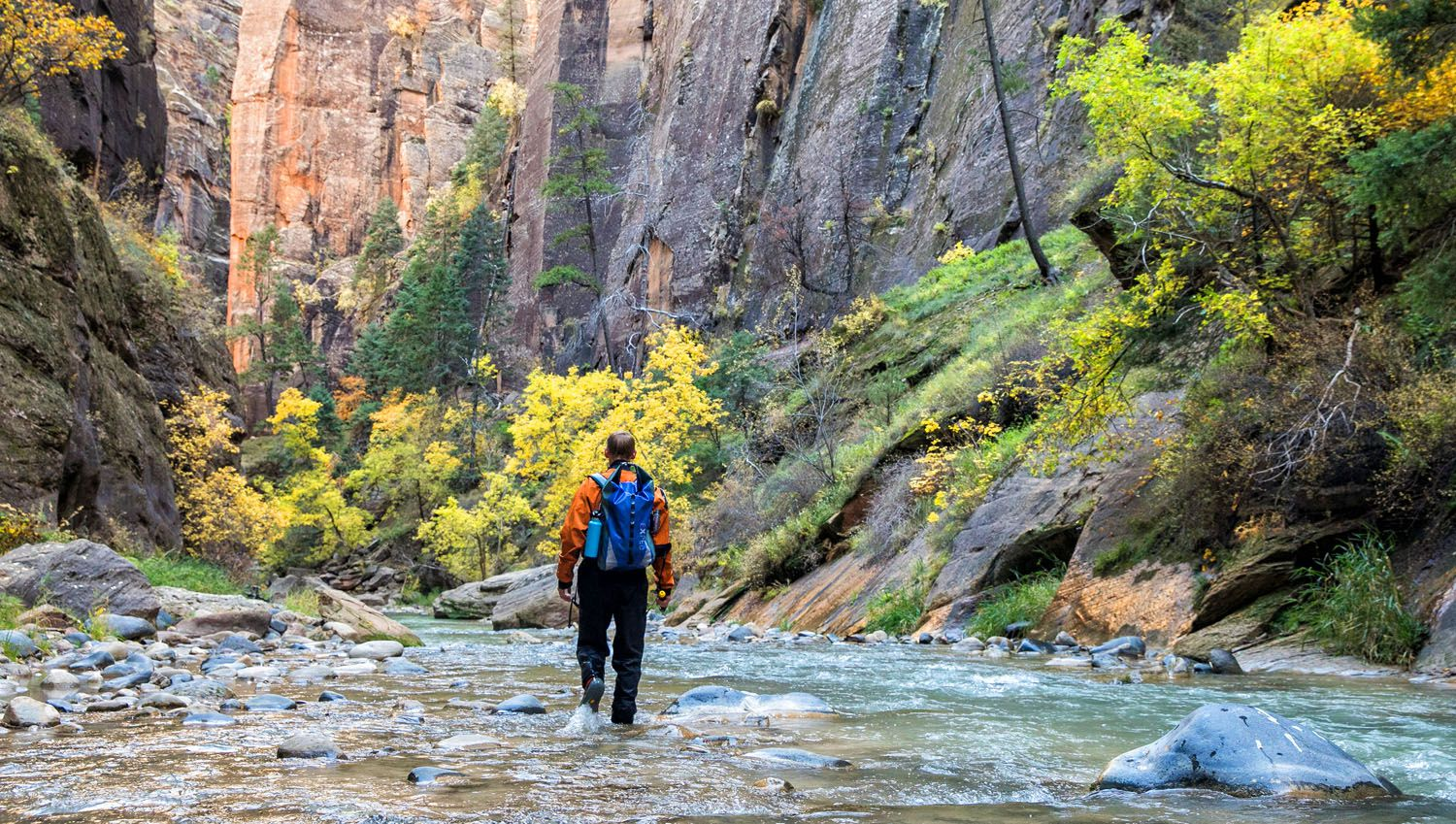 Zion Narrows: Hiking the Top-Down Route in One Day | Earth ...