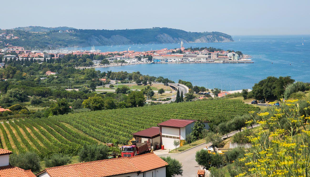 Slovenian Istria