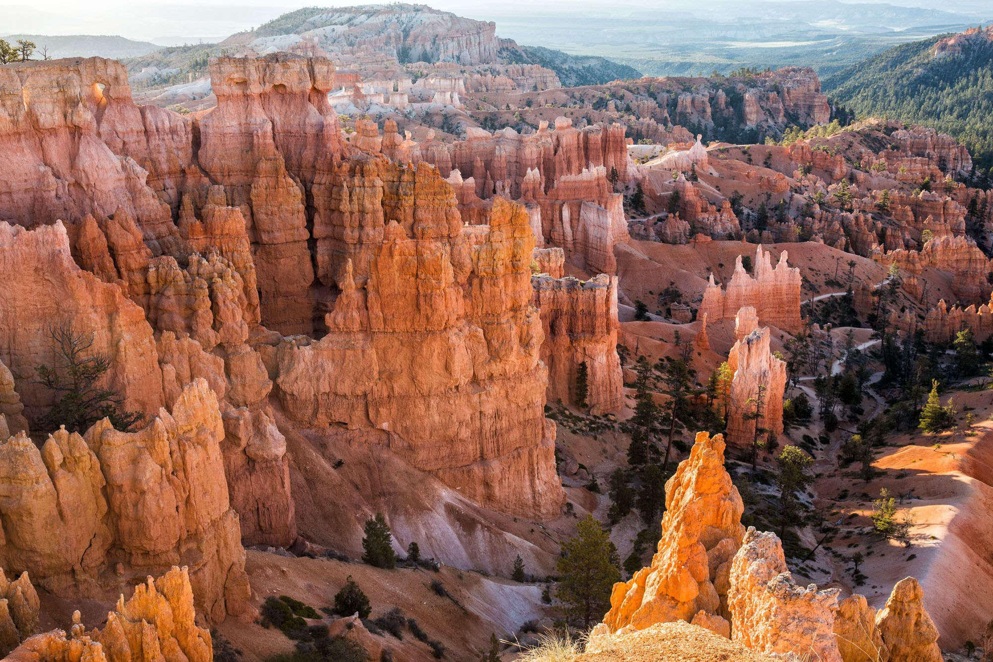 Bryce Canyon in May