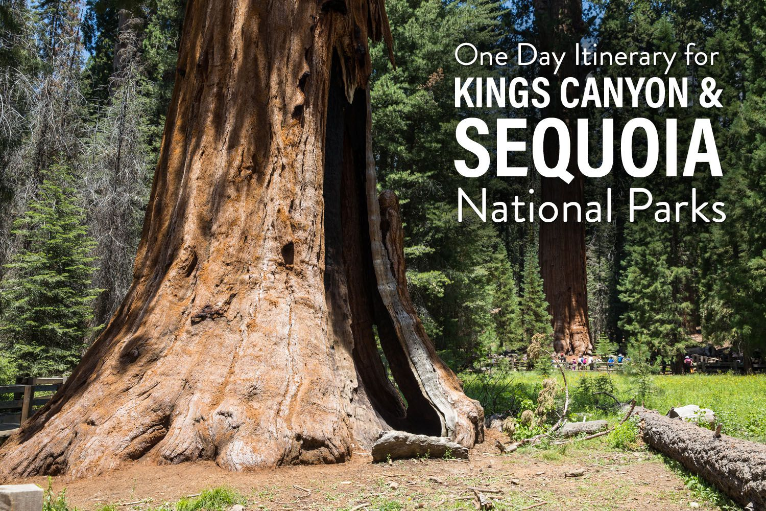 Kings Canyon and Sequoia