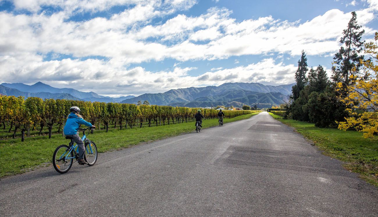 Marlborough Wine Region