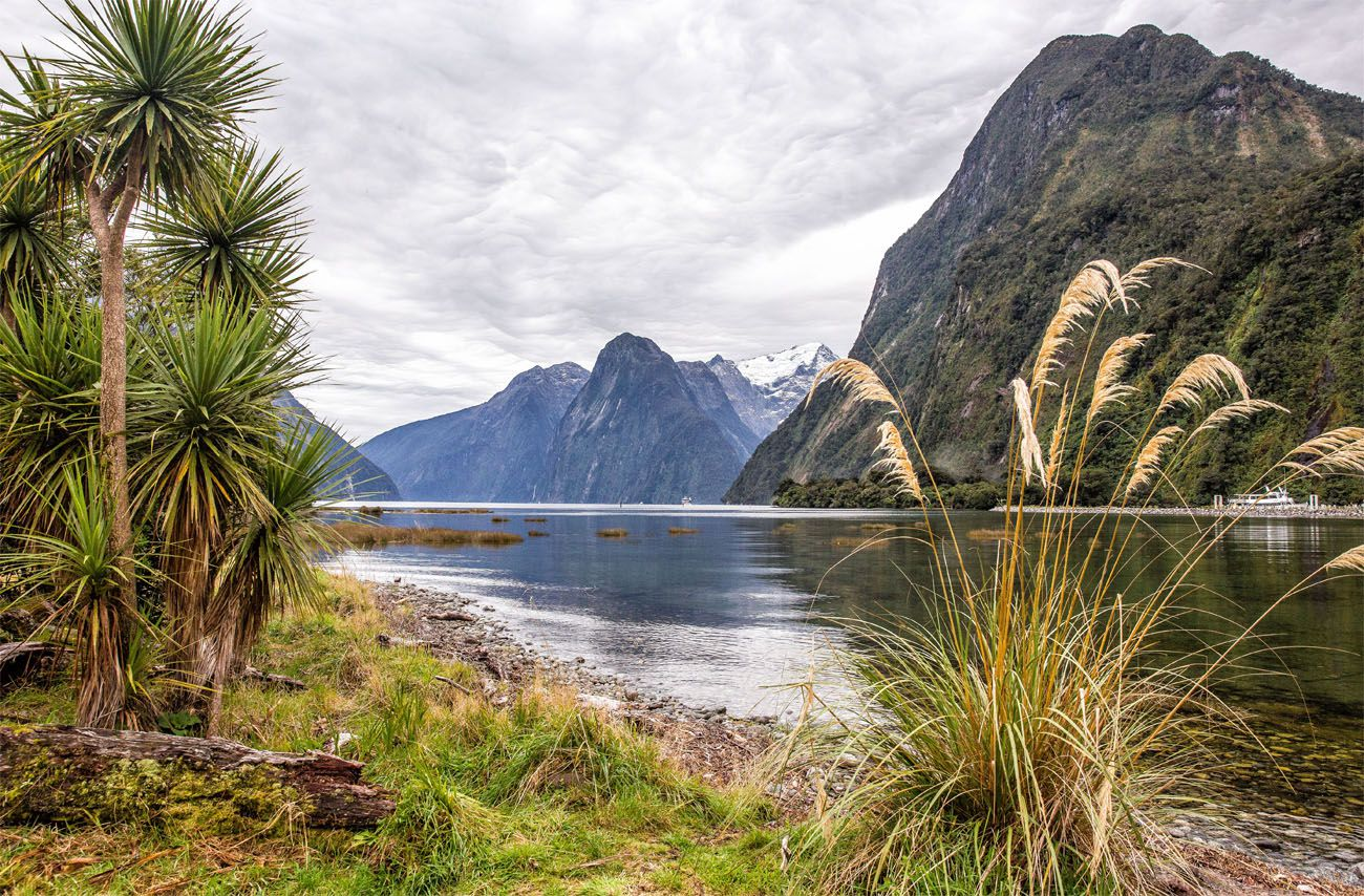 Milford Sound New Zealand itinerary