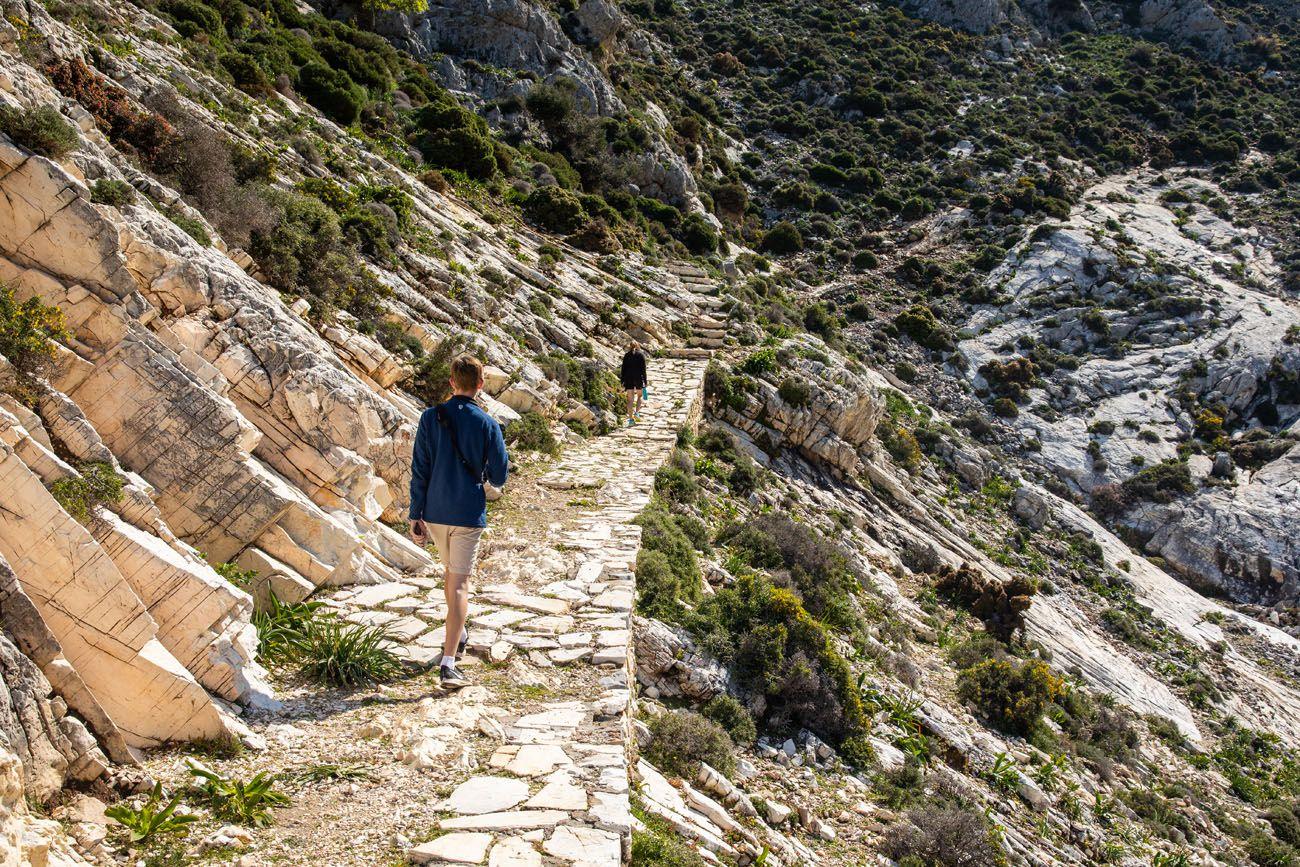 Mount Zeus Trail
