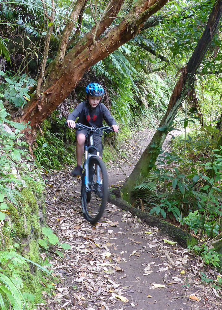 Mountain Bike Taupo