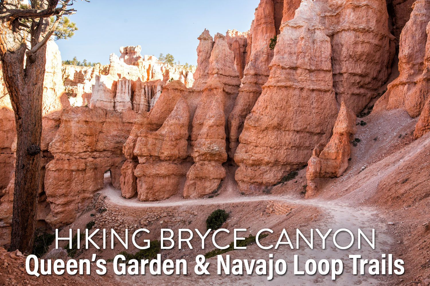 Hike Bryce Canyon