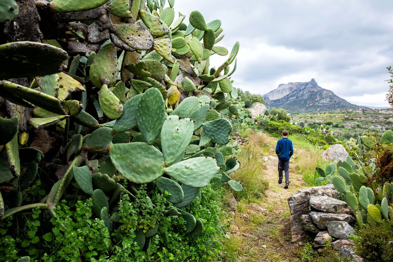 Naxos Village Walk