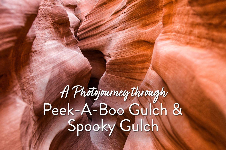 Spooky Gulch
