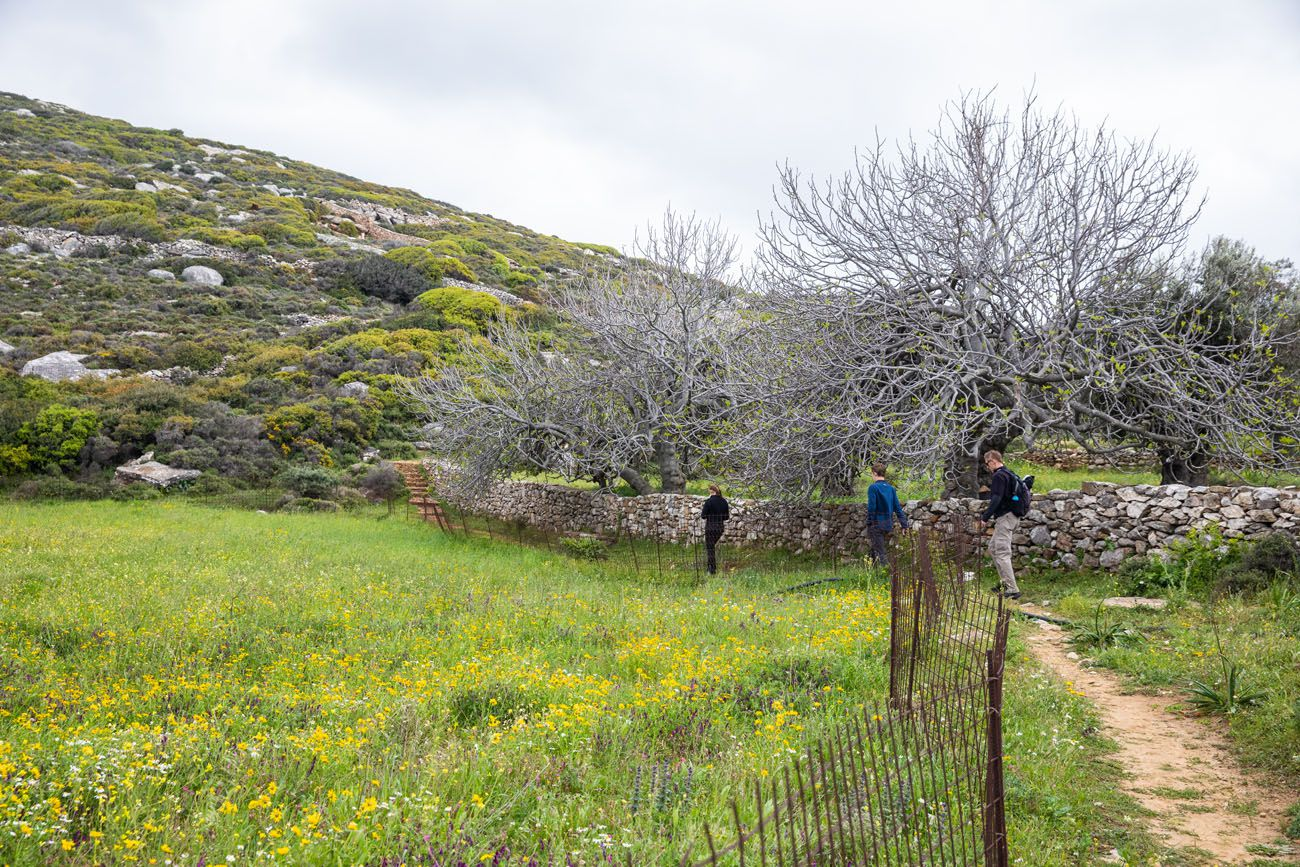 Trail to Kouros