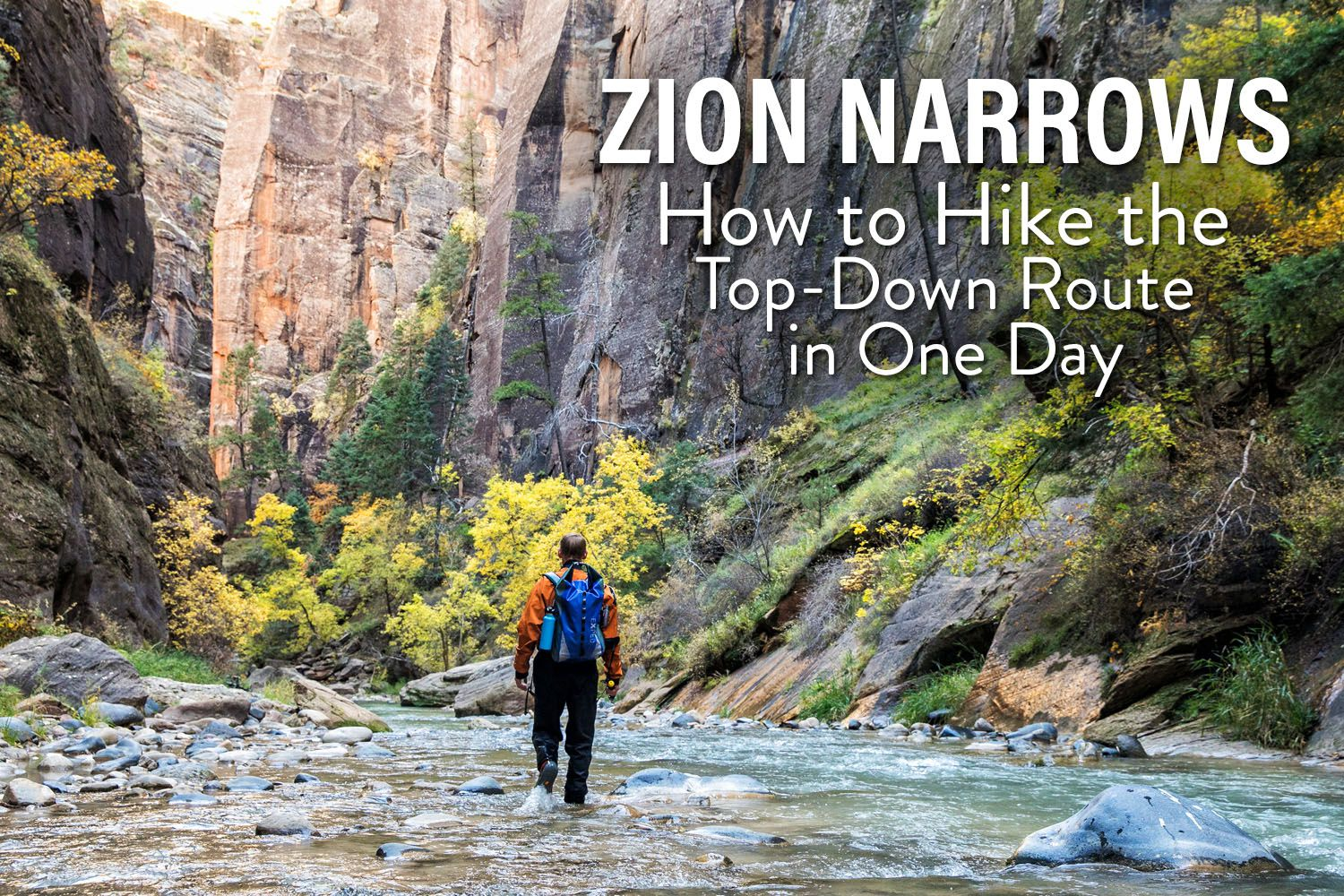 Zion Narrows in One Day