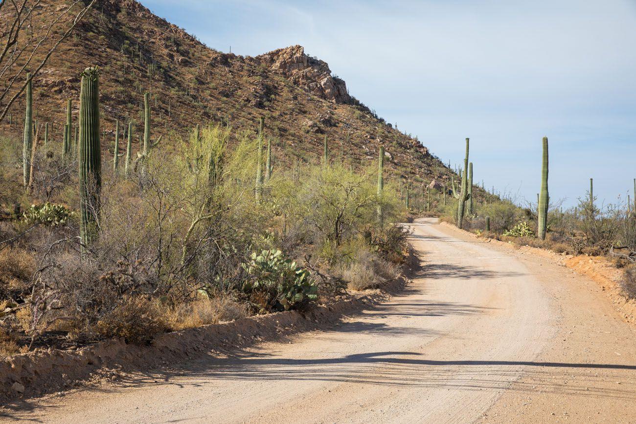 Bajada Loop Drive