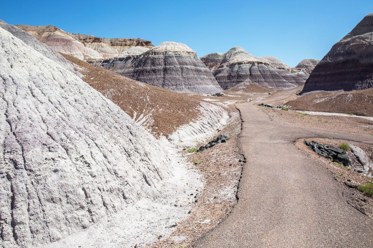 Best Things to do in Petrified Forest