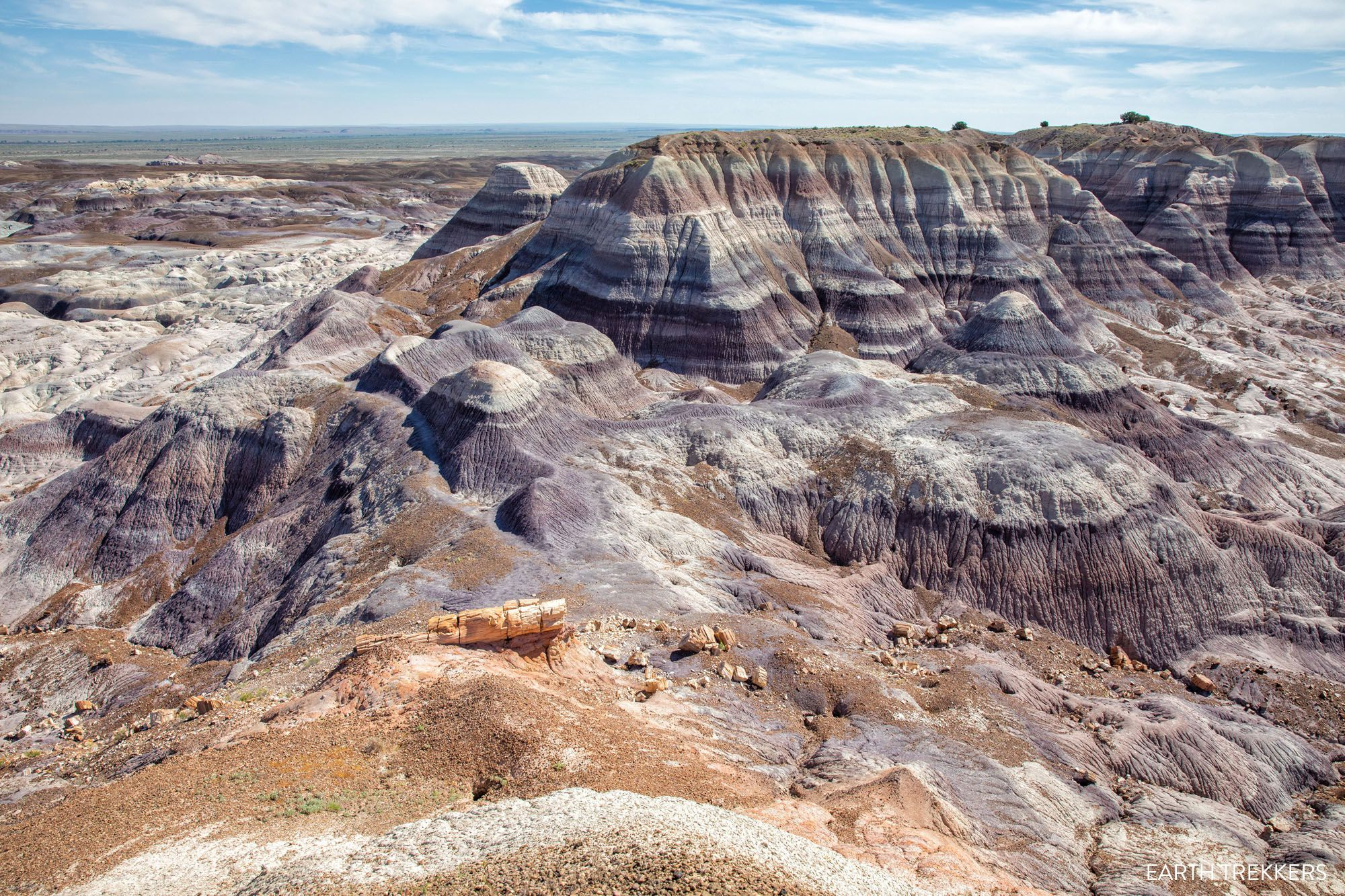 Blue Forest Trail Petrified Forest