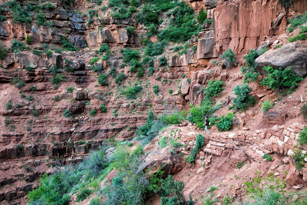 Hiking North Kaibab Trail