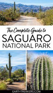Saguaro National Park Guide