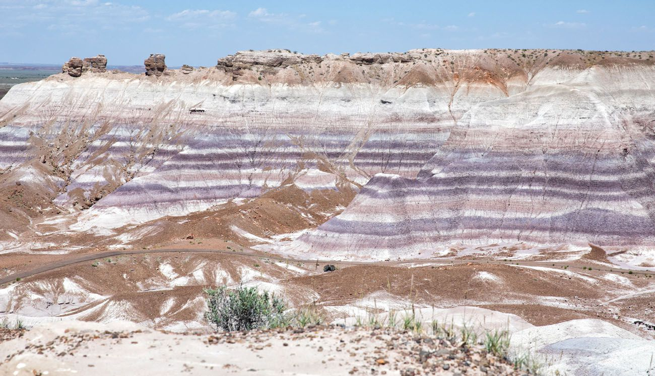 Things to do in Petrified Forest
