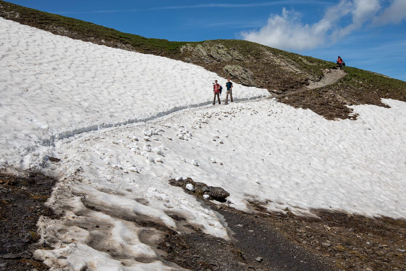 More Snow on the Trail