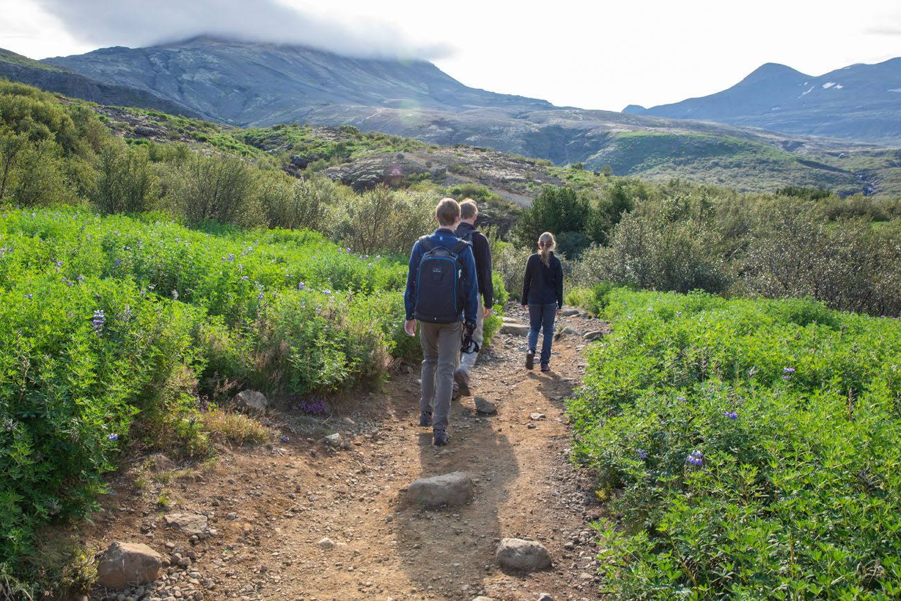 First-part-of-the-hike.jpg.optimal ▷ Cascada de Glymur: la guía completa de senderismo
