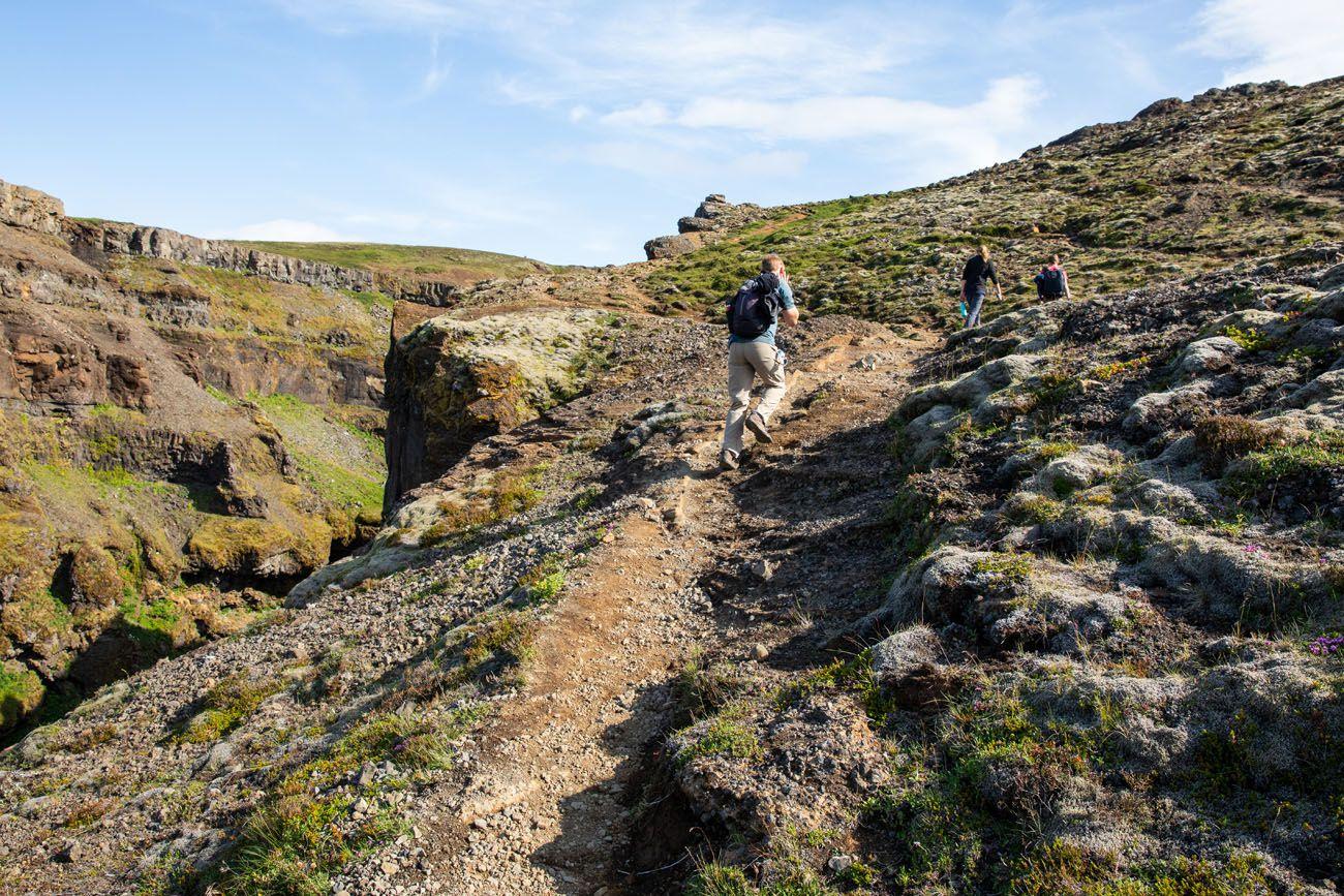 Glymur-Trail.jpg.optimal ▷ Cascada de Glymur: la guía completa de senderismo