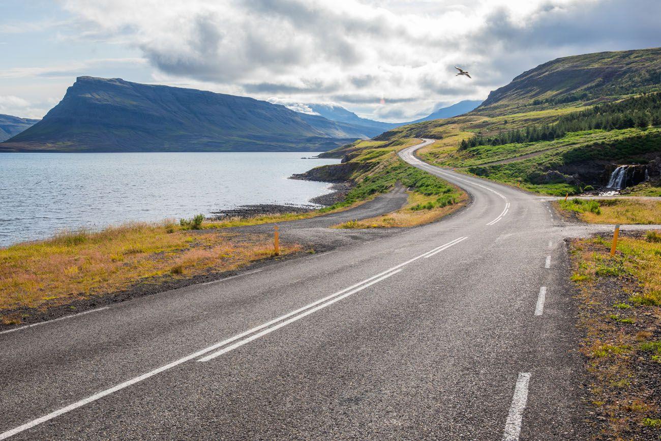 Iceland-Road.jpg.optimal ▷ Cascada de Glymur: la guía completa de senderismo