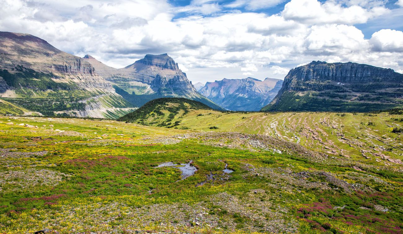 Logan Pass Glacier National Park