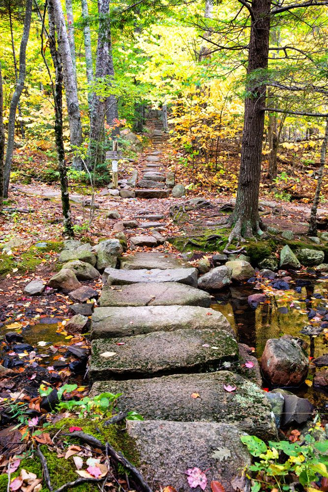 Acadia Hiking Trail