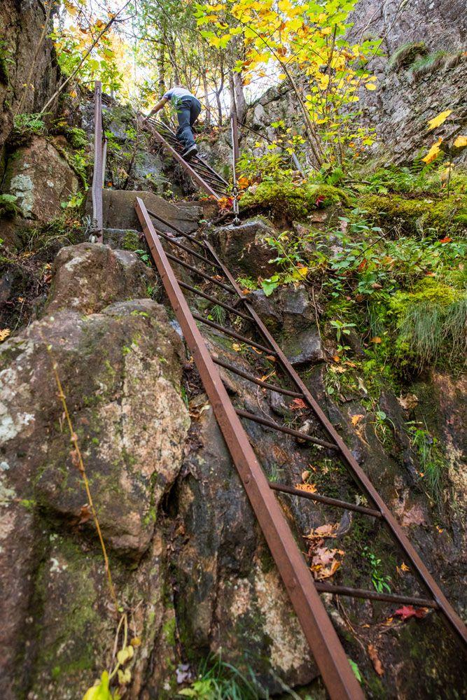 Beech Cliffs Ladders