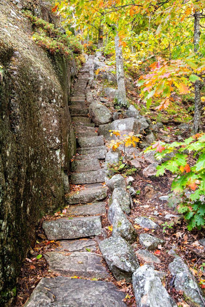 Ladder Trail