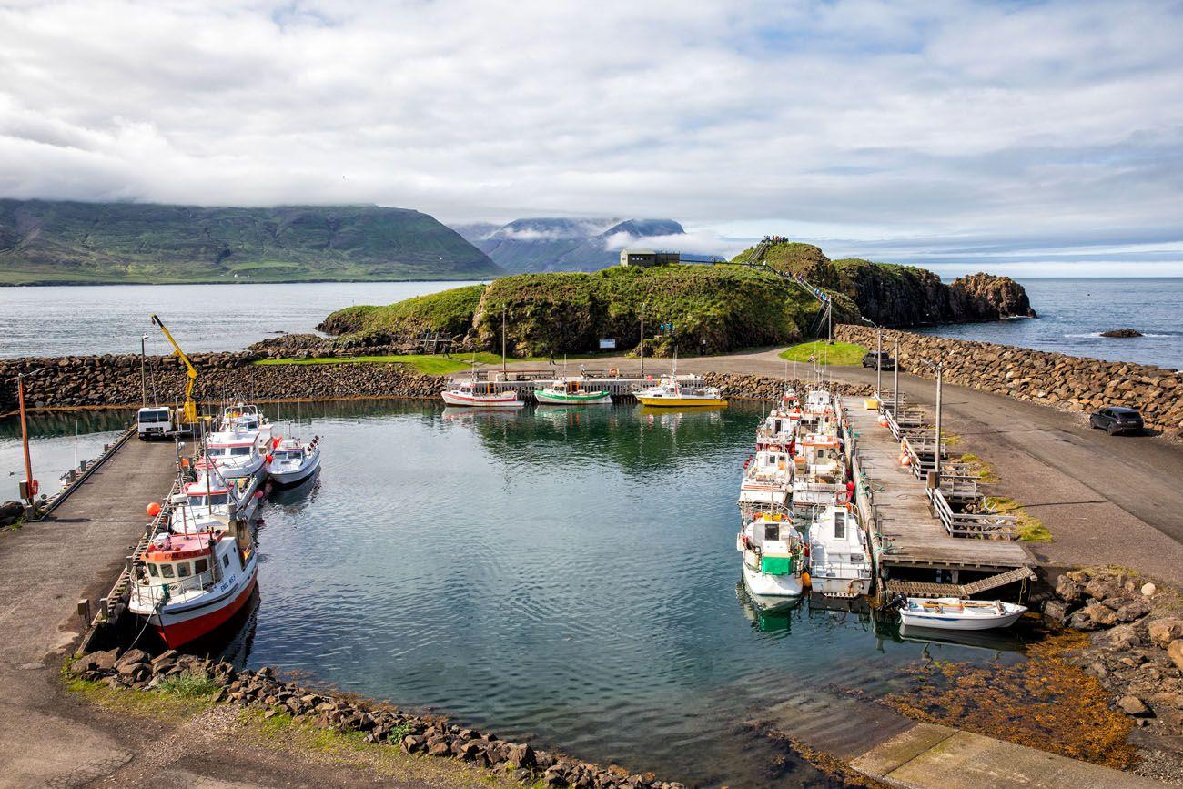 Puffin Marina Iceland