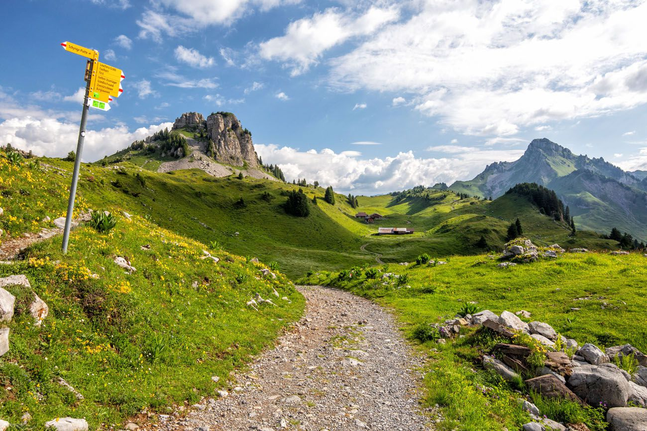 Schynige Platte Hike