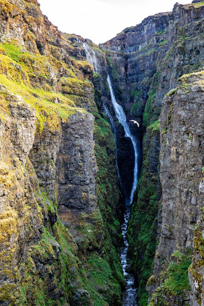 Hike to Glymur Waterfall