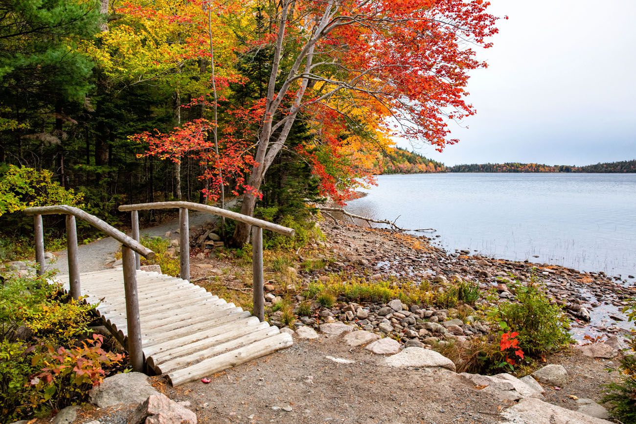 Acadia in October