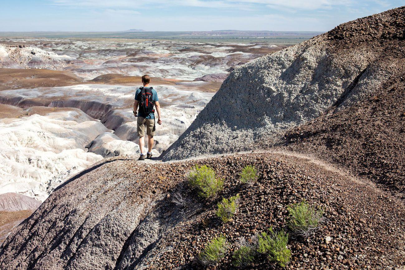 Petrified Hike