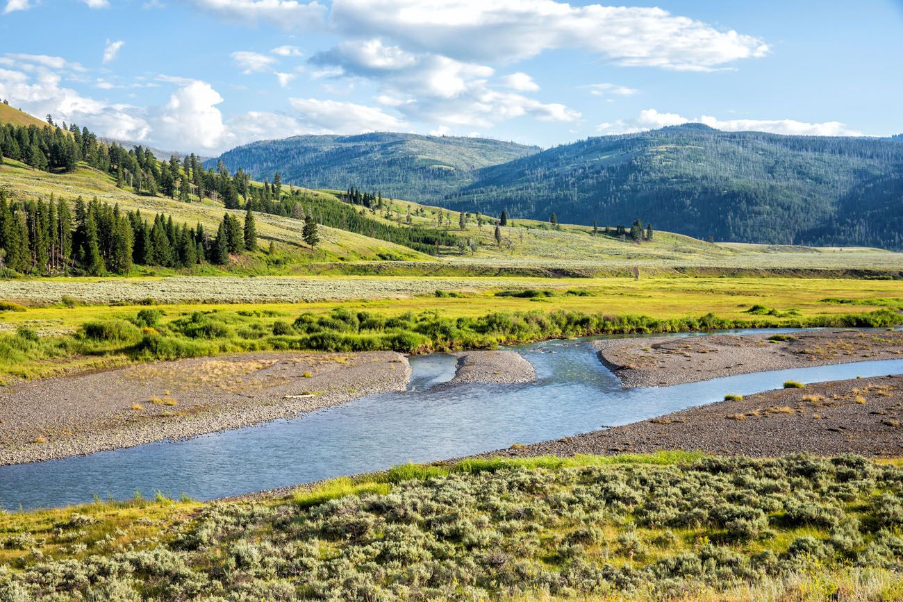 Lamar Valley Yellowstone Itinerary