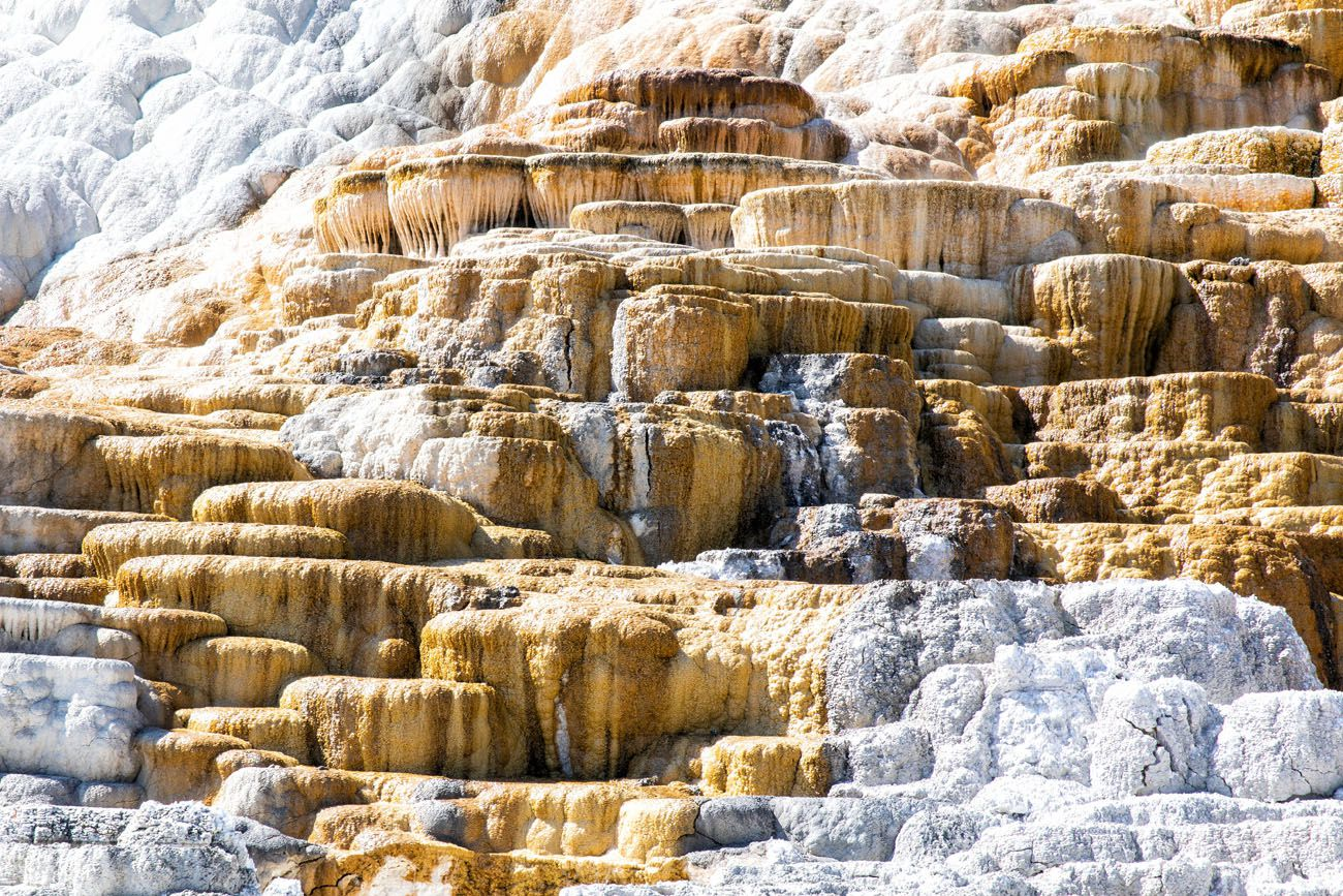 Mammoth Hot Springs Yellowstone Itinerary