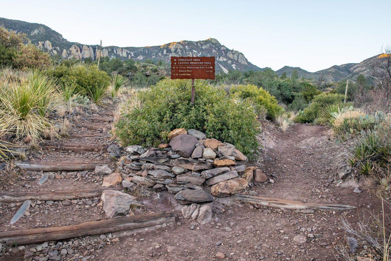 Chisos Basin Loop