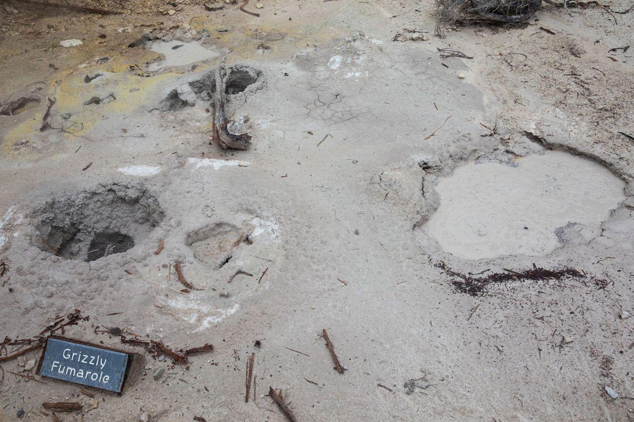 Mud Pots geyser basins in Yellowstone