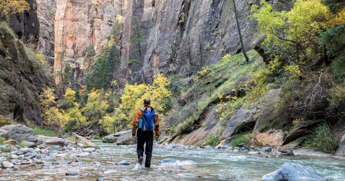 Zion Narrows Guide