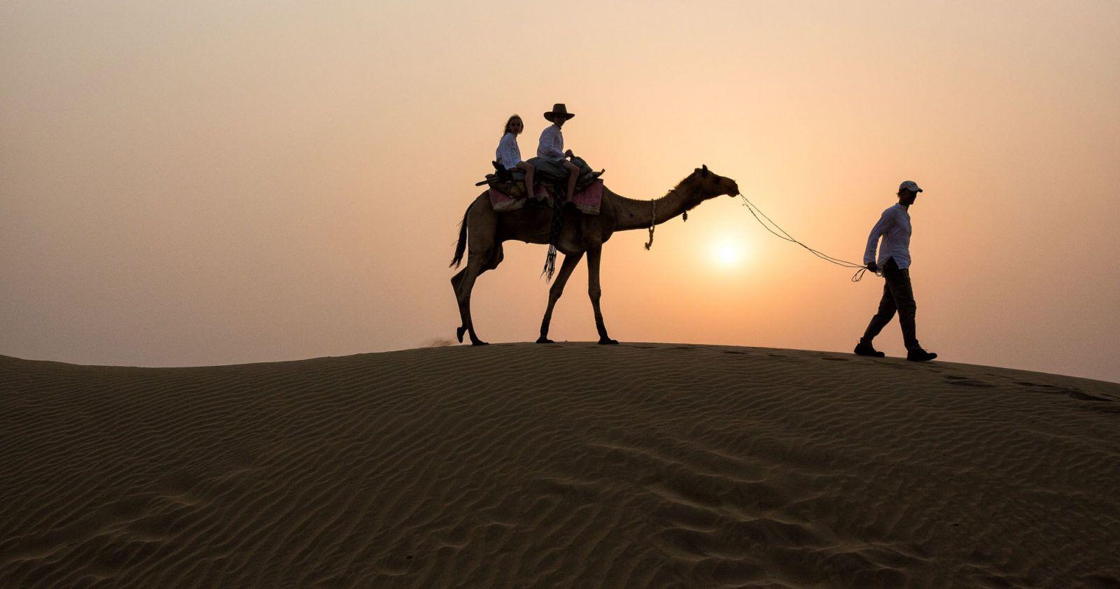 India Camel Safari