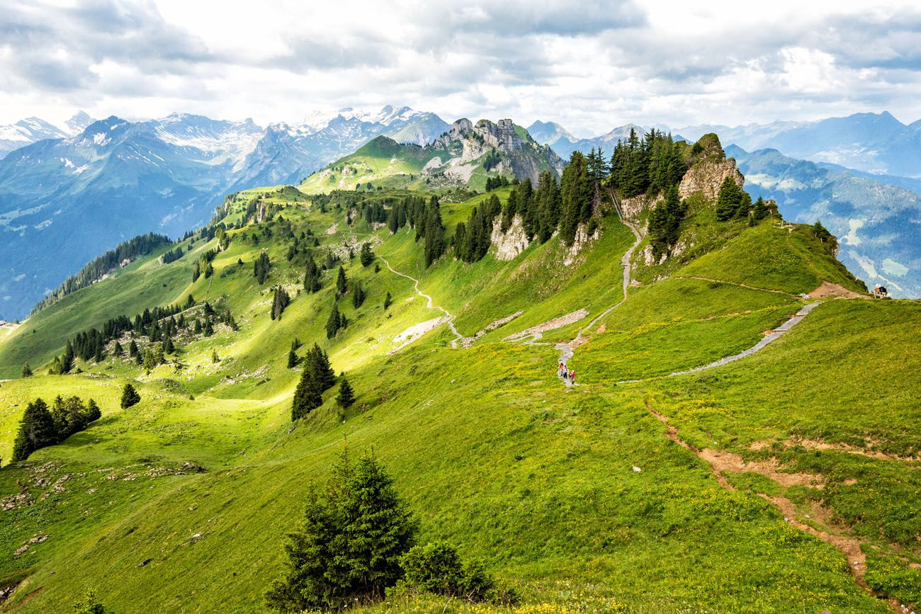 Panorama Trail Schynige Platte day trips from Lausanne