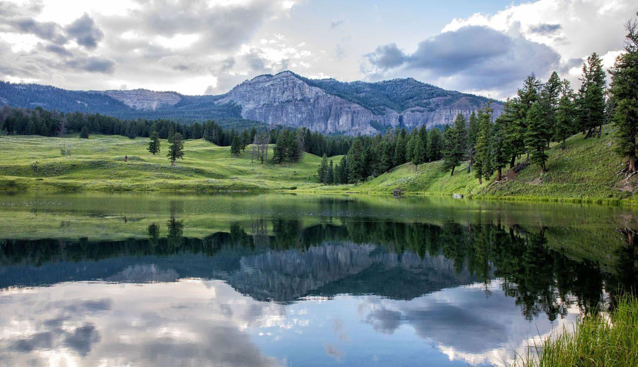 Trout Lake Yellowstone