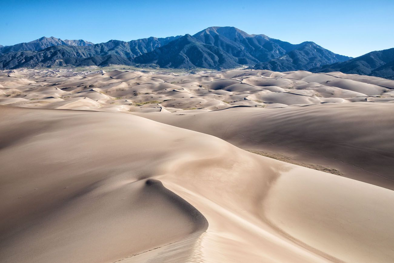 High Dune View