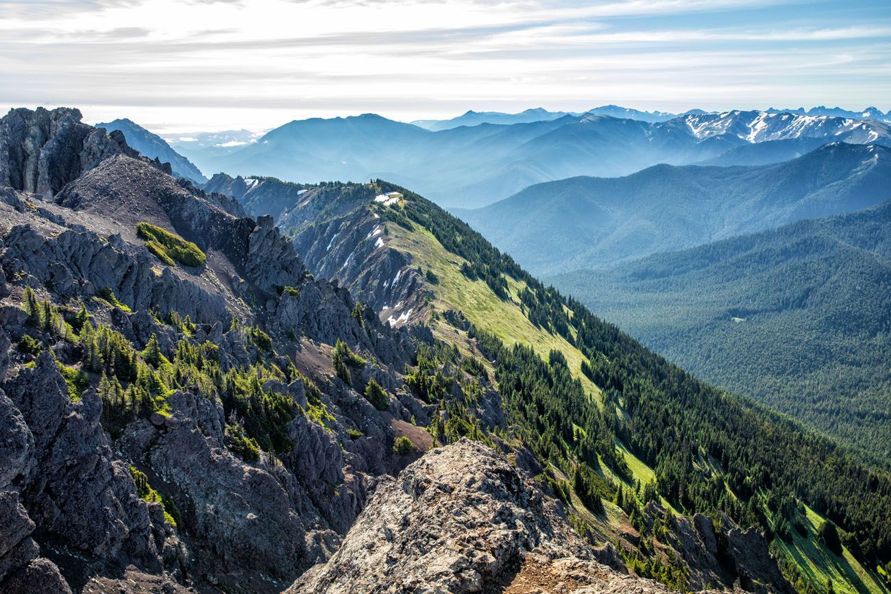 Best Hike Olympic National Park