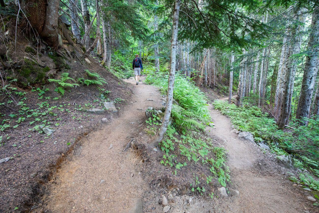 Cascade Pass Switchback
